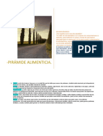 PIRÁMIDE ALIMENTICIA (1)