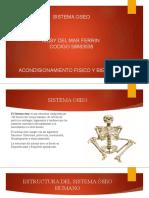 SISTEMA OSEO- Tarea 1 (3) 123 (1)Kissy del mar COMPLETO.pptx