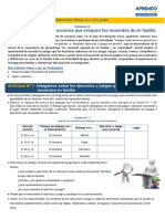 s20-prim-ciclo-V-5-6-educacion-fisica ALBORADA.pdf
