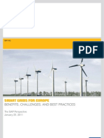 12036 NM Smart Grids for Europe En