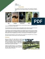 About_Emu