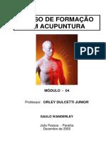 APOSTILA DO CURSO DE ACUPUNTURA - 04
