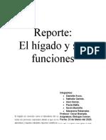 Reporte funciones del hígado (1)
