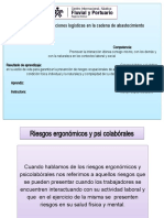 Shachy Puello Arellano, Diapositivas de riesgos ergonomicos y psicolaborales (1)