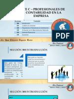 9 PARTE C – PROFESIONALES DE LA CONTABILIDAD EN LA EMPRESA.pdf