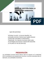 S01.s1 - Estrategias  de Gestión para la Sostenibilidad Ambiental.pptx