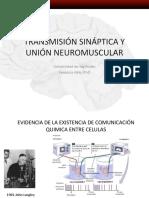 transmision sinaptica 2017-1