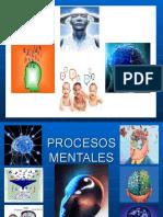 EXPOSICION PSICOLOGIA 1