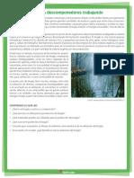 7 E Biogás organismos descomponedores trabajando