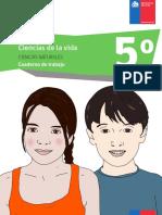 CuadernilloPac_U2_5º.pdf