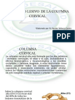 Mecanismos lesivos columna cervical