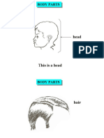 body-parts.ppt