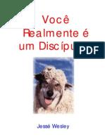 livro voce discipulo- legalizado