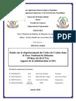 sca BELLOULA Salima.pdf