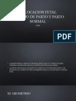 TRABAJO DE PARTO Y PARTO NORMAL.pptx