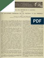 la-anatomia-humana-en-la-iliada-y-la-odisea-786394