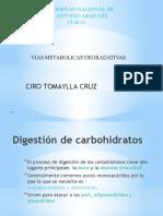 bio-7-degra-cc