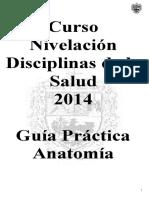 DELVA 03.doc