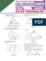 Semejanza-de-Triángulos-Para-Quinto-Grado-de-Secundaria.pdf