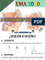 APARATO REPRODUCTOR FEMENINO - RODY.pdf