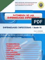 EMF.INFCC O1