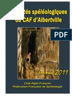 Activites CAF 2011.pdf