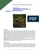 requerimientos-nutricionales-y-fertilizacion-del-cultivo-del-cafe.doc