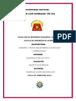 INFORME DE NELIDA (Autoguardado)