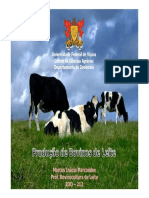 BOVINO DE LEITE (2018_07_05 03_05_44 UTC).pdf