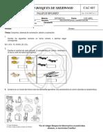 MATEMATICAS+GRADO3.pdf