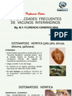 SANIDAD ANIMAL. (ENFERMEDADES FRECUENTES EN VACUNOS(1).pdf