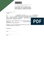 PROCESO CAS 012-2020-PCM-PEB DJ _ Postulante