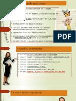 ley gral.sistema de carrera