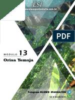 Curso de Filosofia e Teologia Yoruba - Ifá Módulo 13 - Orisa Yemoja