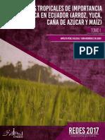 Cap.1 Origen, taxonomía, morfología, fisiología y nutrición del cultivo de.pdf