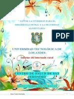 reseña historica de  SAN JERONIMO.docx