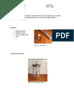 Proyecto # 1 Electroscopio