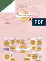 Patologia 3,S. 2,Liquen Plano,Melanie Demera Castro.