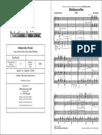 Moldauwellen (Walzer) - Kurt Pascher.pdf