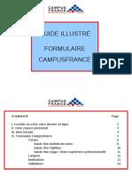 guide_illustre_formulaire_2011_1.pdf