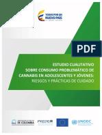 estudio_cualitativo_consumo_cannabis_adolecentes_jovenes_riegos_practicas