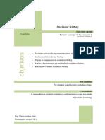 Osciladores_Capitulo_10.pdf