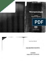 Neuropsicologia Risueño 2010 full_compressed