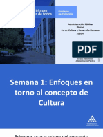 Presentación Enfoques del concepto de cultura