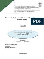 Mémoire Master.pdf
