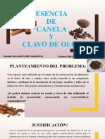 ESENCIA DE CANELA Y CLAVO DE OLOR.pptx