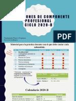 Pln Comp-Prof(2020B) (1)
