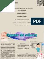 """""""Cancer de Cabeza"""" marian"""