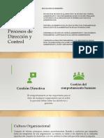 Proceso de Dirección (1)