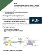 Transporte-activo-primario-y-secundario (2).docx